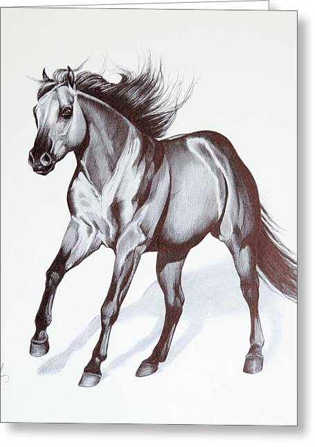 Quarter Horses Greeting Cards - Quarter Horse at Lope Greeting Card by Cheryl Poland