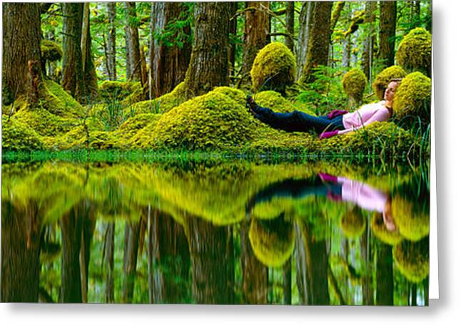 Moss Green Greeting Cards - Queen Charlotte Island Swamp Greeting Card by David Nunuk