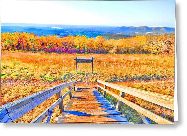 Wooden Stairs Greeting Cards - Queen Wilhelmina State Park Greeting Card by Douglas Barnard