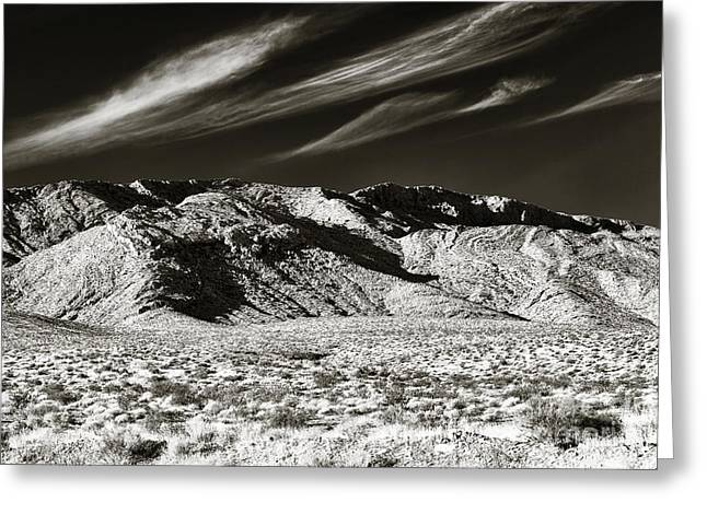 Brown Tones Greeting Cards - Quiet in the Valley Greeting Card by John Rizzuto
