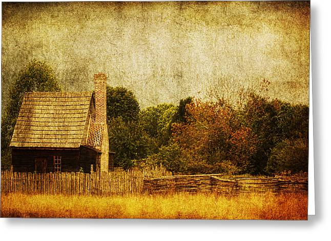 Countryside Digital Greeting Cards - Quiet Life Greeting Card by Andrew Paranavitana