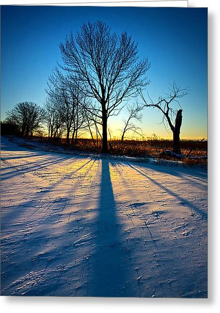 Geographic Greeting Cards - Quiet Light Greeting Card by Phil Koch