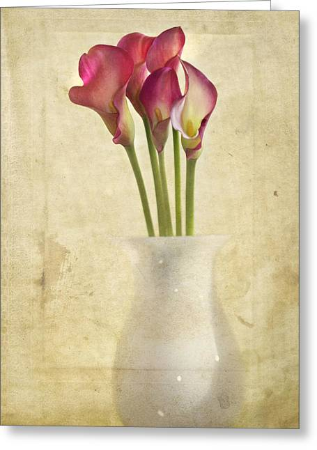 Cala Lily Greeting Cards - Quietly Greeting Card by Rebecca Cozart