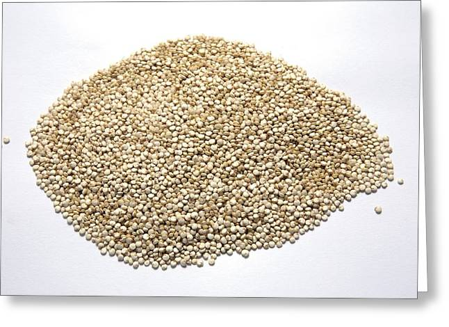 Gluten Free Greeting Cards - Quinoa Greeting Card by Victor De Schwanberg