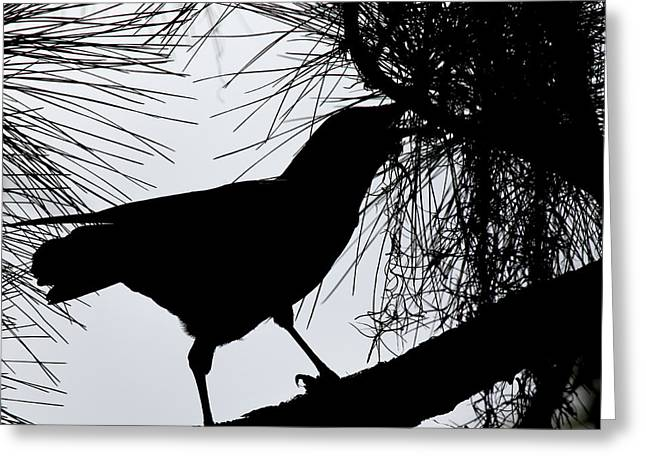 The Raven Greeting Cards - Quoth the Raven  Nevermore Greeting Card by Joseph G Holland