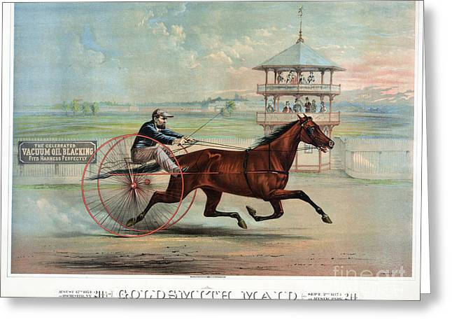 Blinders Greeting Cards - Racehorse: Goldsmith Maid Greeting Card by Granger