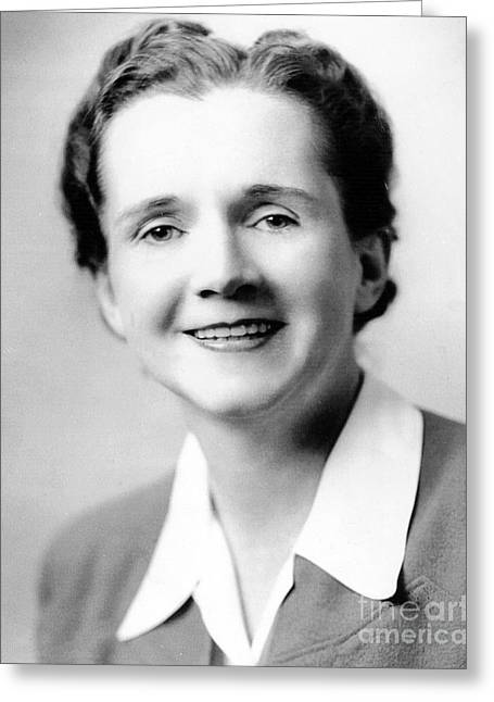 Rachel Carson Greeting Cards - Rachel Carson (1907-1964) Greeting Card by Granger