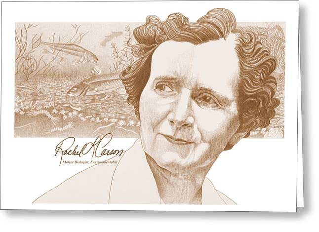 Rachel Carson Greeting Cards - Rachel Carson Greeting Card by John D Benson