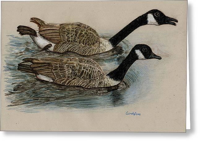 Geese Drawings Greeting Cards - Racing Geese Greeting Card by Cynthia  Lanka
