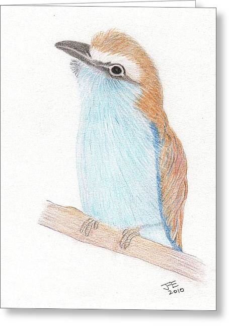 Best Sellers -  - Racquet Greeting Cards - Racquet-tailed Roller Greeting Card by Jacqueline Essex