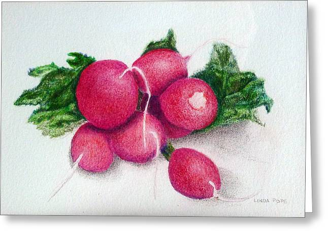 Linda Pope Greeting Cards - Radishes Greeting Card by Linda Pope