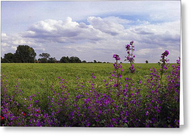 Flower Bombs Greeting Cards - RAF Fersfield Greeting Card by Jan Faul