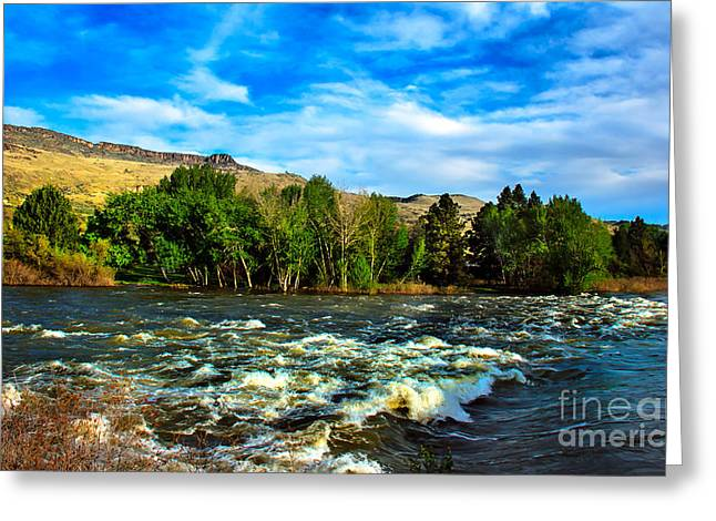 Raging River Greeting Card by Robert Bales
