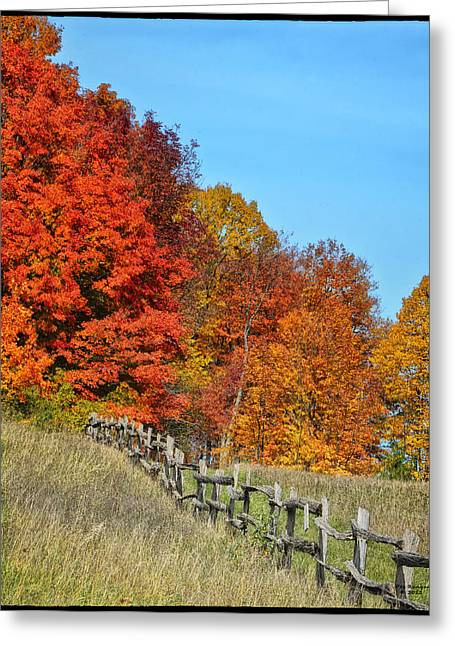 Rail Fence In Fall Greeting Card by Peg Runyan