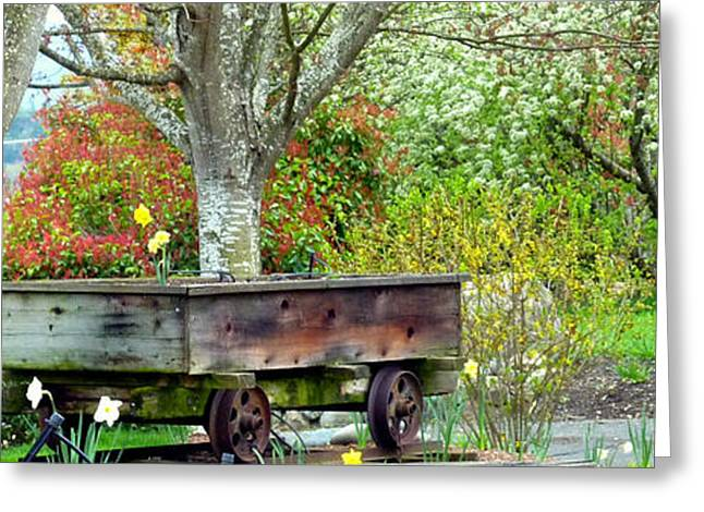Rusted Cars Greeting Cards - Railroad Car Blooming Greeting Card by Cindy Wright