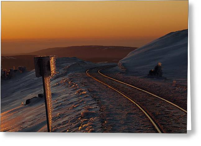 Brocken Greeting Cards - Railroad Tracks At Sunset In An Icy Greeting Card by Norbert Rosing