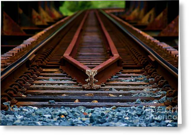 White Pyrography Greeting Cards - Railway track leading to where Greeting Card by Blair Stuart