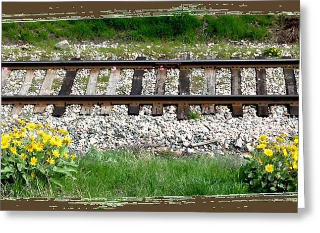 Wildflower Photos Greeting Cards - Railway Tracks And Wild Sunflowers Greeting Card by Will Borden