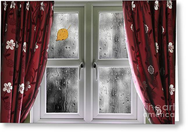 Flower Design Greeting Cards - Rain on a window with curtains Greeting Card by Simon Bratt Photography LRPS