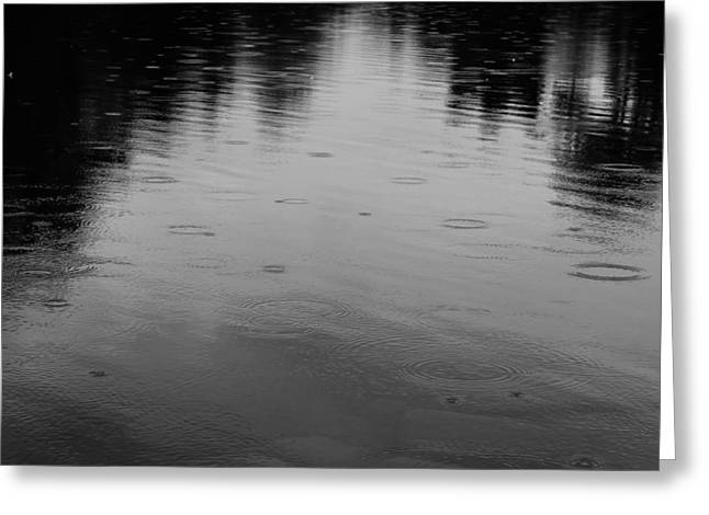 Reflections In River Greeting Cards - Rain Greeting Card by Rachel Cohen