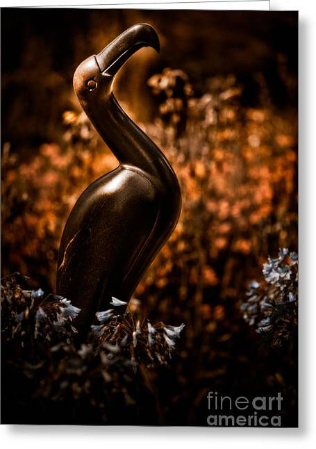 Mystic Art Photographs Greeting Cards - Rainbird Greeting Card by Venetta Archer