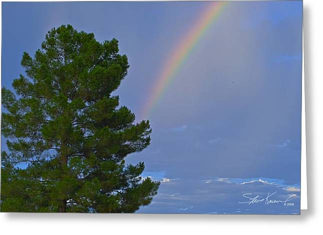 Steve Knievel Greeting Cards - Rainbow Behind Evergreen Greeting Card by Steve Knievel