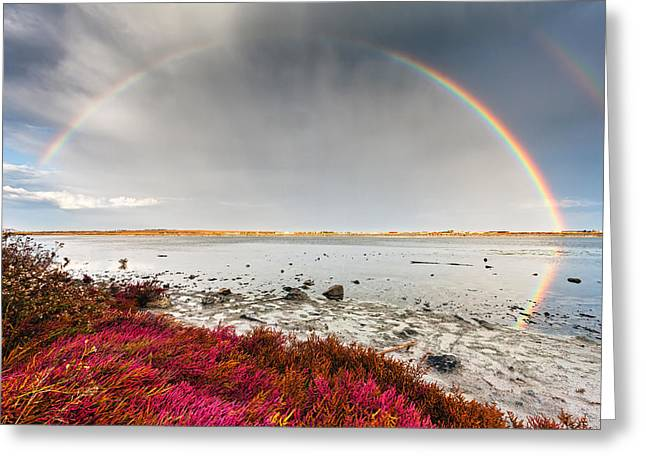 Rainbow By The Lake Greeting Card by Evgeni Dinev