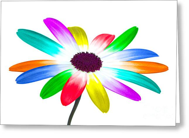 Cut-outs Digital Art Greeting Cards - Rainbow daisy Greeting Card by Richard Thomas