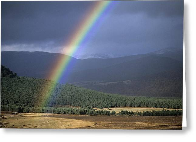 Balmoral Greeting Cards - Rainbow Greeting Card by Duncan Shaw