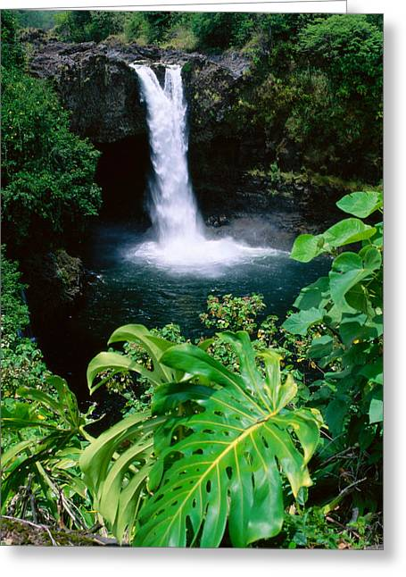 Peter French Greeting Cards - Rainbow Falls Greeting Card by Peter French - Printscapes