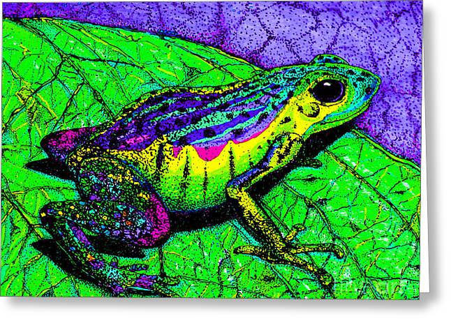 Amphibians Drawings Greeting Cards - Rainbow frog 2 Greeting Card by Nick Gustafson