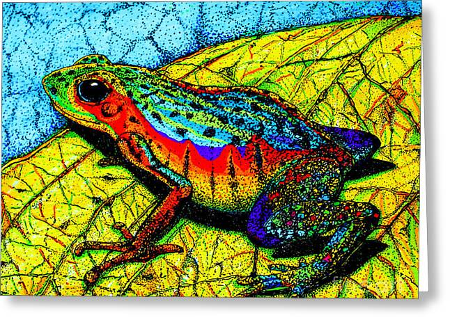 Amphibians Drawings Greeting Cards - Rainbow Frog Greeting Card by Nick Gustafson