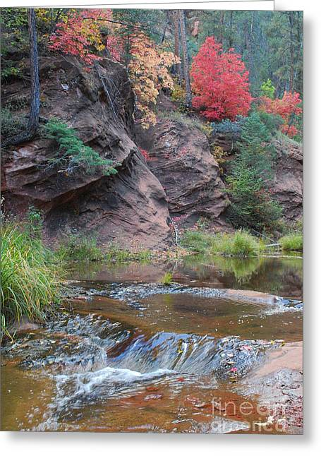 Heather Kirk Greeting Cards - Rainbow of the Season and River over Rocks Greeting Card by Heather Kirk
