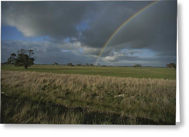Kangaroo Island Greeting Cards - Rainbow Over Fields At Kangaroo Island Greeting Card by Sam Abell