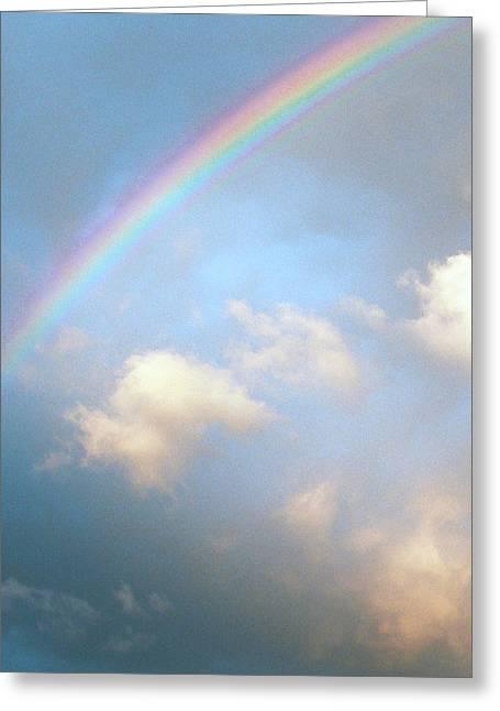 Rainbow Greeting Card by Sally Stevens