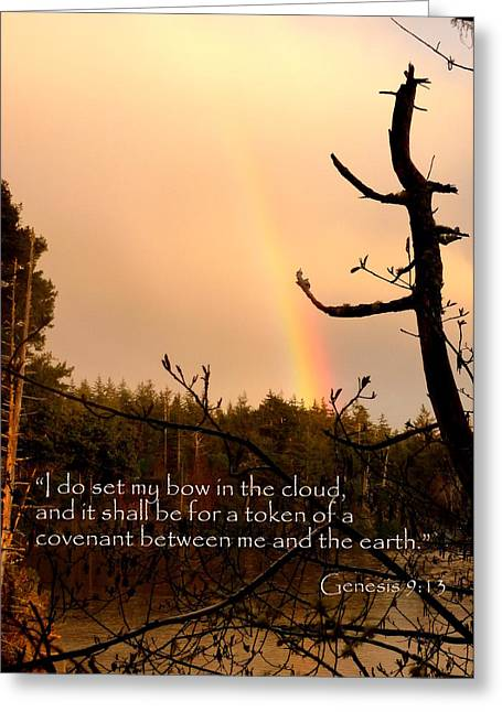 Rainbow Scripture Genesis 9 Greeting Card by Cindy Wright
