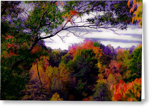 Rainbow Treetops Greeting Card by DigiArt Diaries by Vicky B Fuller