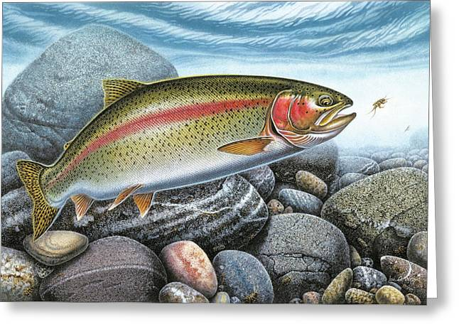 Trout Fishing Paintings Greeting Cards - Rainbow Trout Stream Greeting Card by JQ Licensing