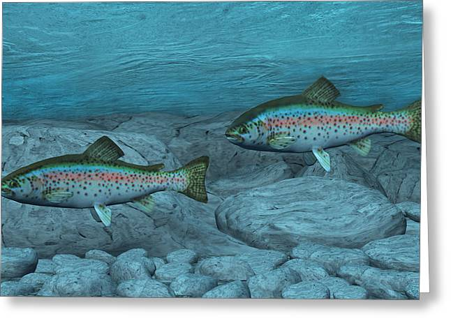 Rainbow Trout Greeting Card by Walter Colvin