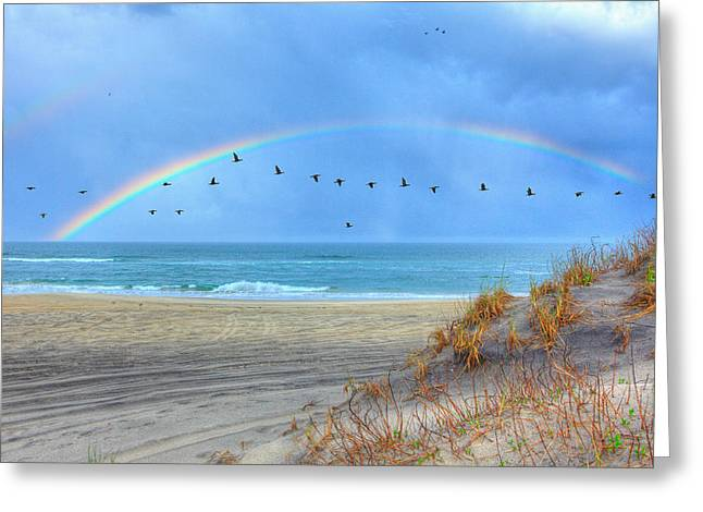 Pea Island Greeting Cards - Rainbows and Wings I Greeting Card by Dan Carmichael