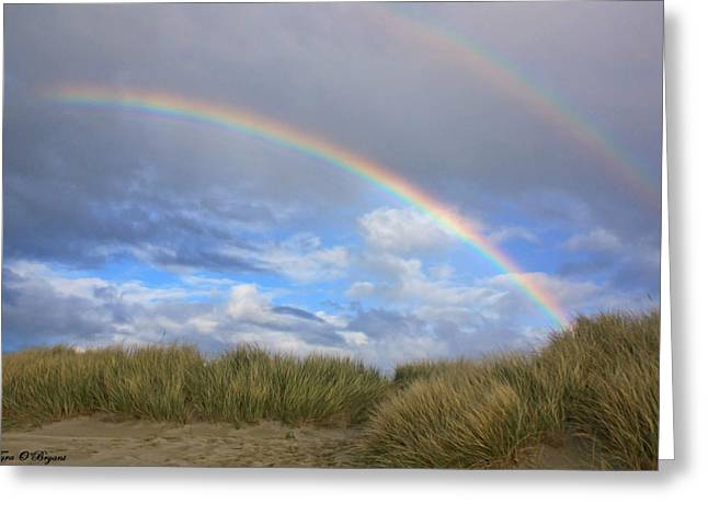 Double Rainbow Digital Art Greeting Cards - Rainbows Over The Sand Greeting Card by Tyra  OBryant
