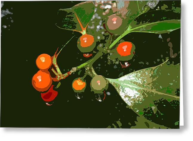 James Hill Greeting Cards - Raindrops On Red Berries Greeting Card by James Hill