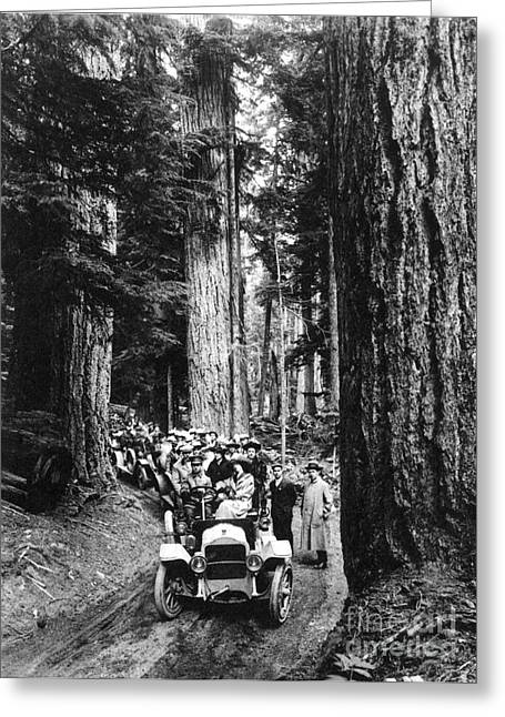 American Automobiles Greeting Cards - Rainier National Park Greeting Card by Granger