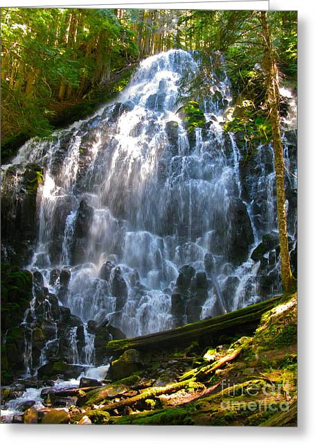 Blues Greeting Cards - Ramona Falls-I Greeting Card by PJ  Cloud