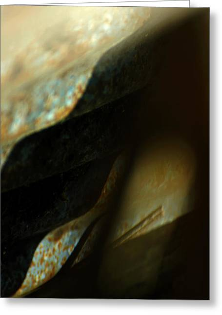 Abstract Expressionism Photographs Greeting Cards - Rapture Greeting Card by Rebecca Sherman