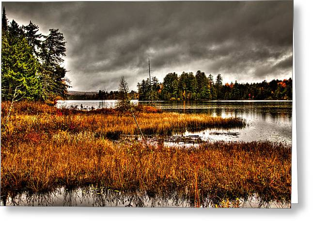 Fir Trees Greeting Cards - Raquette Lake in the Adirondacks Greeting Card by David Patterson