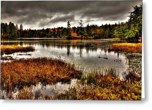Fir Trees Greeting Cards - Raquette Lake in Upstate New York Greeting Card by David Patterson