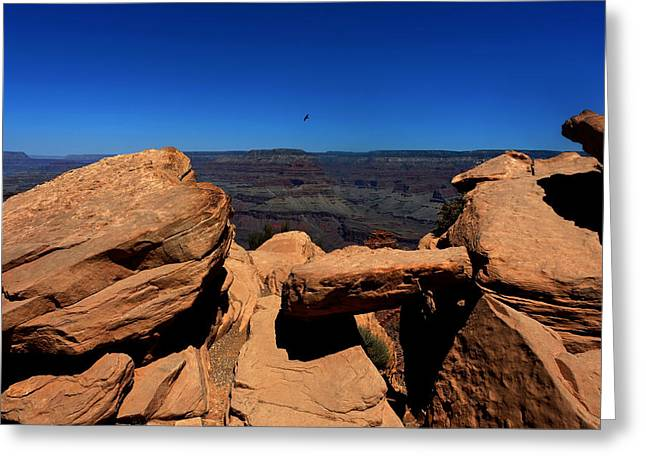 South Kaibab Trail Greeting Cards - Raven Flying Near Ooh Aah Point Greeting Card by Julie Niemela