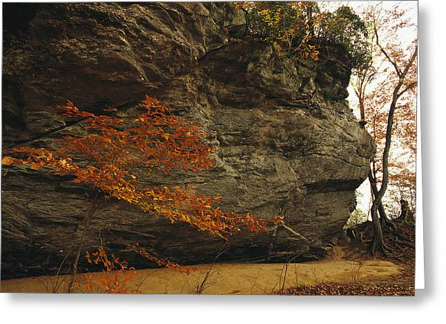 Raven Rock, Trail, And Autumn Colored Greeting Card by Raymond Gehman