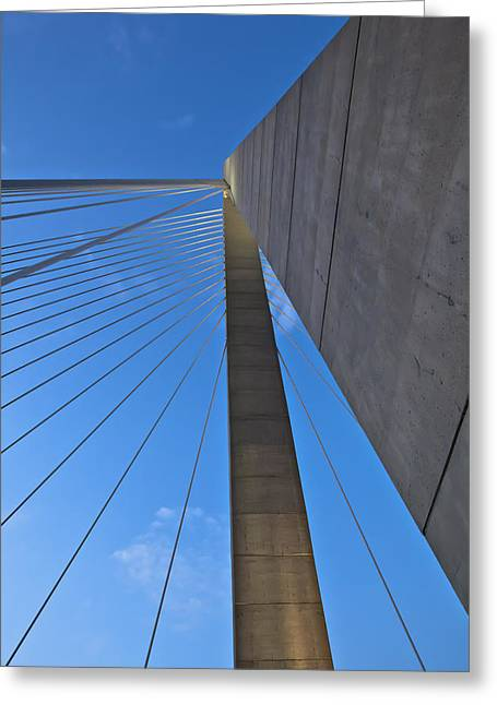 Donny Greeting Cards - Ravenel Overhead Day - Vertical Greeting Card by Donni Mac